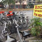 レンタル自転車でアユタヤの遺跡巡り