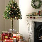 猫や犬がいる家で!クリスマスツリーを設置する方法…