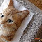 リアル過ぎる!立体的な3Dの猫ちゃんの肖像がスゴイ!!