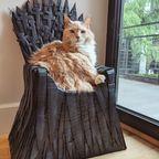 魔王のような!ネコ専用の玉座!!
