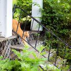 関連記事「【海外の廃墟】デトロイト・シティの猫屋敷 その2」のサムネイル画像