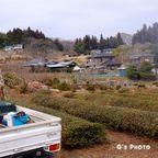 坂戸市の風景写真