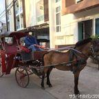 ランパーンで花馬車に乗って寺院巡り