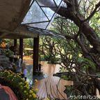 サティアン・タマサターンはバンコクにある女性が集まる自然豊かな瞑想寺