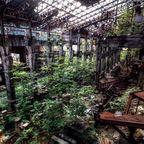 関連記事「【田老鉱山】緑に包まれた選鉱場」のサムネイル画像