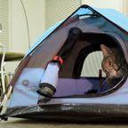 【画像】ネコ専用テントが可愛くてカッコいい!!