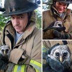 【画像】動物達も本気で助ける!ちょっと癒される消防士の仕事の様子!!