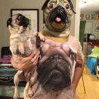 犬だって怖い!怯えてるワンちゃんの画像の数々!!