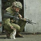 戦場にもネコは居る!!極限状態でも癒される戦場のネコと兵士の画像の数々!!