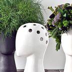 【画像】人の頭から花や植木が生えてくる植木鉢www