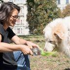【画像】犬も喜ぶ!ワンちゃん用の水筒がちょっとかわいい!!