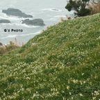 福井県の風景写真