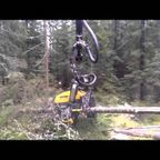 森の木を!一瞬で伐採して切断してしまう森林伐採マシンが凄い!!