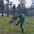 女の子の!オオカミのしつけ方が凄まじい!!