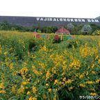 ワチラーロンコーン・ダムは国王ラーマ10世の名前のダム in カンチャナブリ