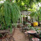 FlowerPot Cafeはタイ人に人気の緑豊かなカフェ in ワントーンラーン区