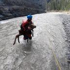 ヘラジカの子供をナイスタイミングで川から助ける!!