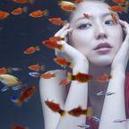 【No.1045】 Goldfish / 長澤まさみ
