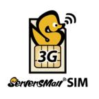 DTIが月額490円の定額3Gサービス「ServersMan SIM 3G 100」を開始!
