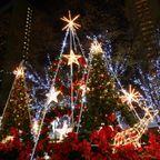 クリスマスパーティー|熟女NHヘルス孃マダム舞の袖振り合うも他生の縁