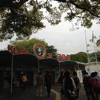 王子動物園H25.4.23