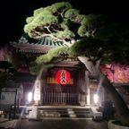 鎌倉の四季