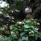 関連記事「陽光の中の奥多摩ロープウェイ」のサムネイル画像