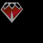 PMP道館徽章