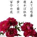 kotechai_dodoitsu