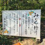 橿原園 養護