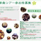 唐桑ツアー2014年9月