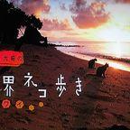 岩合光昭の世界ネコ歩き「ハワイ」