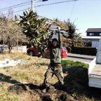 ToyokawaBioMarche「つちのいち」(豊川有機農業の会)