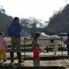2014-2-23おさんぽ会at空山ポニー牧場