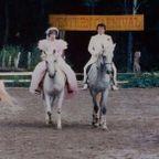 結婚式 馬