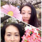 お花見をしてきました|熟女NHヘルス孃マダム舞の袖振り合うも他生の縁