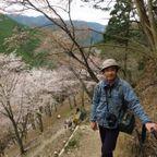 吉野山と高見の郷と波瀬の植物園