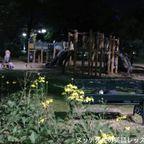 サンティパープ公園でウォーキング in ランナム