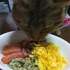 レシピ写真1