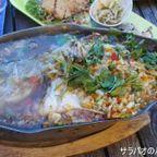 本格タイ料理を楽しめるカラオケ店 BAI MAI RA ROENG RESTAURANT カセート店