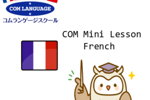 COM Mini French Lesson #392