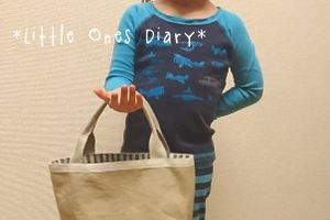 Little Ones Diary