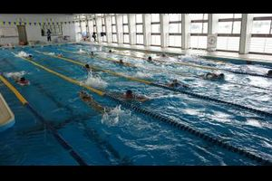 TOKIWA SWIMMING DIARY